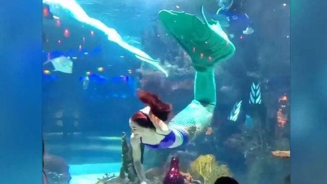 """La sirenita """"Ariel"""" de la vida real que trabaja en un acuario"""